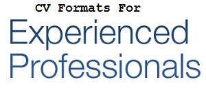 Resume Format for Freshers - Download Online Shine Learning